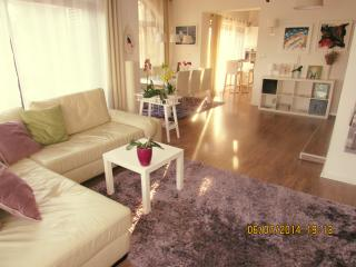 Cozy and modern 120 m2 apartment - Kastav vacation rentals