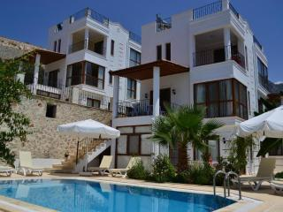 3 Bedroom Turkey rental villa with seaview, close town, private pool, family - Kalkan vacation rentals