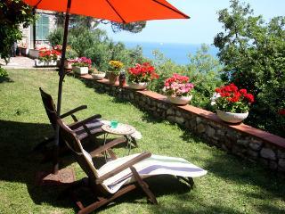Amazing apartment in Portovenere - La Spezia vacation rentals