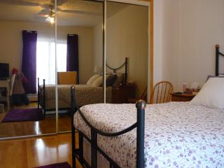 Very sunny bedroom appartment!!! - Montreal vacation rentals