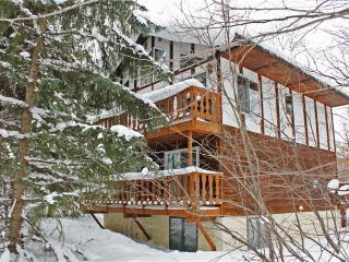 Holiday Haus - Upper Peninsula Michigan vacation rentals