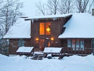 Northern Lights - Ironwood vacation rentals