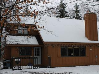 Winterlinks 1 - Upper Peninsula Michigan vacation rentals