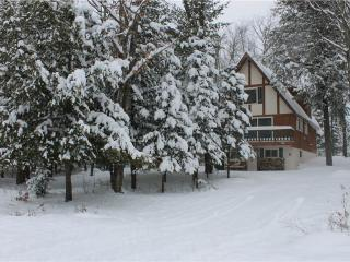 Dancing Bear - Ironwood vacation rentals