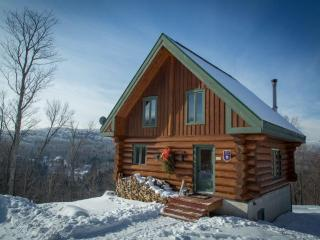 Scandinavian Log Cabin - Sainte-Lucie-des-Laurentides vacation rentals