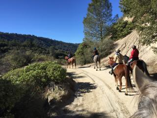 Trail Riding Vacation, Day Rides for exp. Riders - Lake Hughes vacation rentals