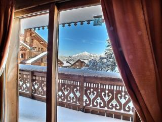 Nice Condo with Internet Access and Television - Les Carroz-d'Araches vacation rentals