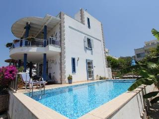 Villa Denis - Turgutreis vacation rentals