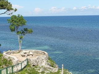 carib apartments mahogany beach ocho rios - Ocho Rios vacation rentals