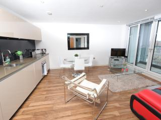 2 bedroom Apartment with Internet Access in Manchester - Manchester vacation rentals
