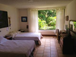 Garden apartment - Santo Domingo de Heredia vacation rentals
