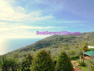 APPARTAMENTO CRAPOLLA (NEW) - SORRENTO PENINSULA - Torca - Termini vacation rentals