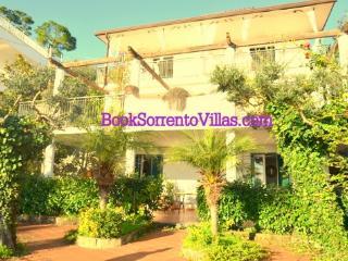VILLA LA GRANSEOLA (NEW) - SORRENTO PENINSULA - Marina del Cantone - Campania vacation rentals