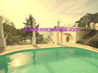 VILLA LA GRANSEOLA (NEW) - SORRENTO PENINSULA - Marina del Cantone - Nerano vacation rentals
