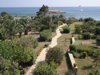 Lovely 7 bedroom Karystos Villa with Deck - Karystos vacation rentals