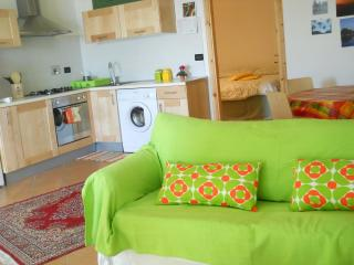 Sunny Condo with Internet Access and Wireless Internet - Pecetto Torinese vacation rentals