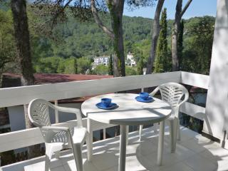 Tamariu: Cozy apartment in a small cove - Tamariu vacation rentals