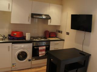 1st Floor 1 bedroom Red apartment - London vacation rentals