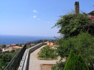 Gorgeous 3 bedroom House in Agia Paraskevi - Agia Paraskevi vacation rentals