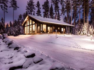 Nice Villa with Internet Access and Television - Palkane vacation rentals