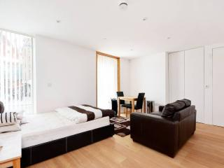 ★NEW STUDIO, CENTRAL LONDON - WOW!★ - London vacation rentals