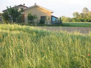 Detached house in the countryside of Venice - Favaro Veneto vacation rentals