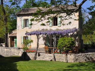Charming cottage on historic 15th c mill & estate - Saint-Remy-de-Provence vacation rentals