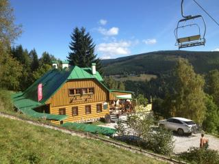 Pension Alenka on the slope Labska-Giantmountains - Spindleruv Mlyn vacation rentals