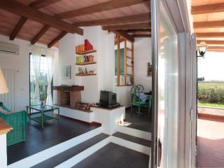 casalino S.Antonio - Tuscania vacation rentals