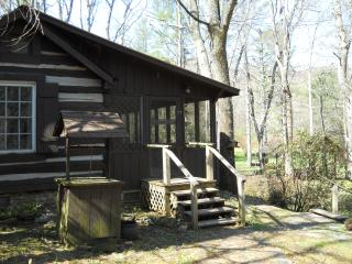 lovely cabin on the dan river - Virginia vacation rentals
