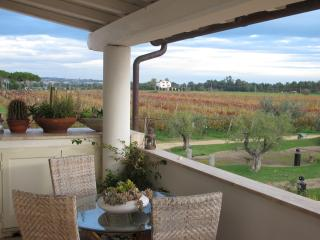 Bright Tarquinia Villa rental with Central Heating - Tarquinia vacation rentals