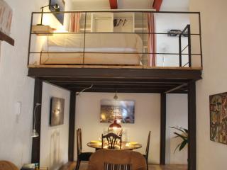 Cozy 1 bedroom Castle in Mexico City - Mexico City vacation rentals