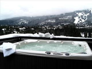 Affordable Luxury Penthouse-Whistler, CA - Whistler vacation rentals