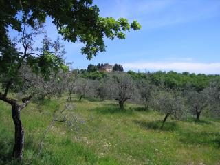 Beautiful Large Villa Close to Florence - Villa Gialla - 14 - Rignano sull'Arno vacation rentals