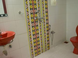Nice Bungalow with Internet Access and Parking - Carambolim vacation rentals