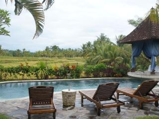 Three Bed Room Villa with Rice View & Salty pool - Ubud vacation rentals
