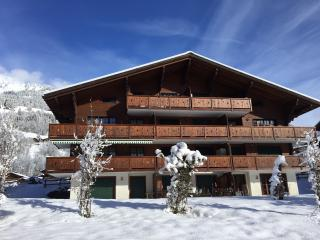 Lovely Condo with Cleaning Service and Garage - Les Diablerets vacation rentals