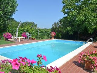 Montecchio - 90596001 - Montecchio vacation rentals