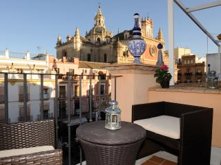 DUPLEX  ATIC WITH GREAT VIEWS - Seville vacation rentals