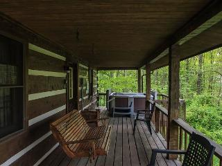 Beautiful Logan Cabin rental with Deck - Logan vacation rentals
