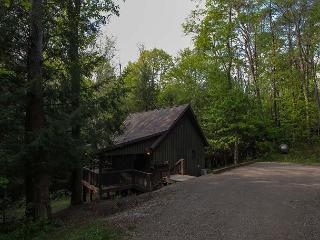 Private Romantic Hocking Hills Cabin - Hocking Hills vacation rentals