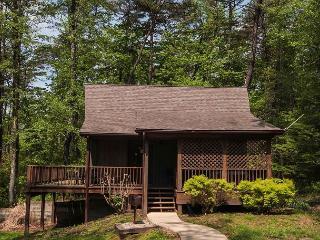 Cozy Logan Cabin rental with Deck - Logan vacation rentals