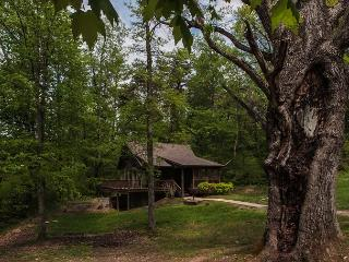 Cozy 2 bedroom Cabin in Logan with Deck - Logan vacation rentals