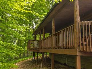 Great Log Home For Get Togethers - South Bloomingville vacation rentals