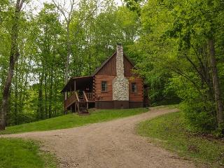 Cozy South Bloomingville Cabin rental with A/C - South Bloomingville vacation rentals