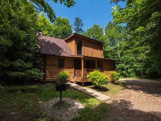 Very Cozy Hocking Hills Log Cabin - Sugar Grove vacation rentals