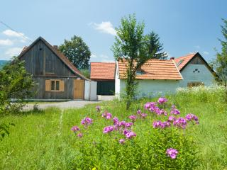Beautiful 2 bedroom Vacation Rental in Plaski - Plaski vacation rentals