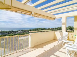 Sunny Penthouse - Sitio de Calahonda vacation rentals