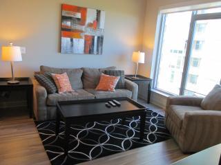 Lux Tysons Corner 1BR W/pool & WiFi - Northern Virginia vacation rentals