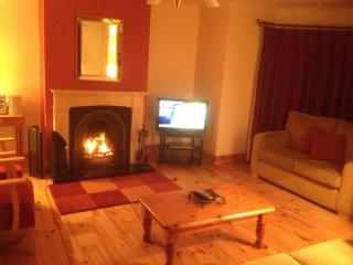 Ard Na Mara, The Wood, Dingle, Co.Kerry, Ireland - Dingle vacation rentals